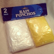 """Look, kids, these 50-cent ponchos match Mickey's shoes!"""